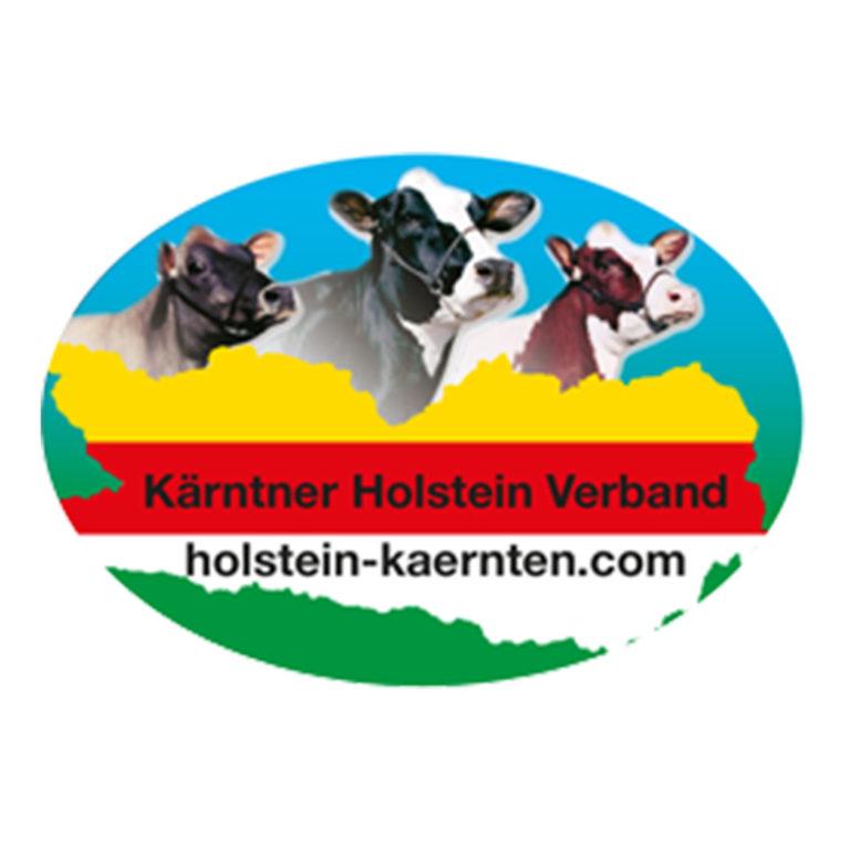Holstein-web
